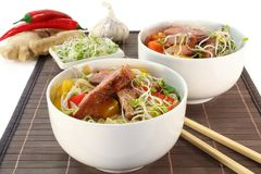 Duck breast with fried noodles Stock Image