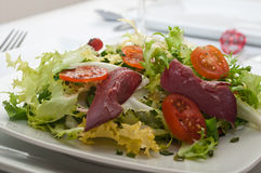 Duck breast with salad Royalty Free Stock Photo