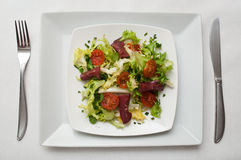 Duck breast with salad Royalty Free Stock Photography