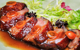 Duck breast with sauce Royalty Free Stock Photography
