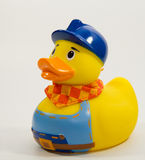 Duck the Builder. Object Photo of rubber duck dressed like a builder isolated on white Stock Images