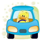 Duck in a car. Cute Duck is sitting in a car royalty free illustration