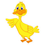 Duck Cartoon Royalty-vrije Stock Afbeeldingen