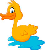 Duck Cartoon Arkivbilder