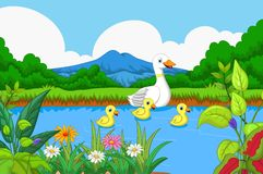 Duck cartoon swimming in lake with landscape background. Illustration of duck cartoon swimming in lake with landscape background Royalty Free Stock Photography