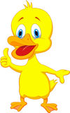 Duck cartoon thumb up Stock Photography