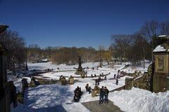 Duck Central Park, Nueva York, nieve e invierno Imagen de archivo libre de regalías