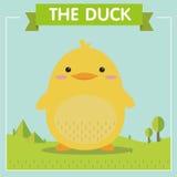 Duck Character amarillo muy lindo Fotografía de archivo