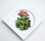 Duck chest main course manu Royalty Free Stock Images