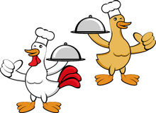 Duck and Chicken Chef Stock Photo