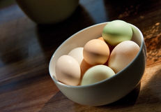 Duck and chicken eggs stock photo