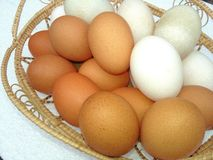 Duck and chicken eggs in bamboo basket on white background Stock Photos