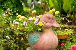 A duck clay pot ,hardened clay of earthenware Royalty Free Stock Photography