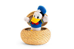 Duck that comes out of a straw basket Royalty Free Stock Image