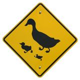 Duck Crossing. Sign Stock Photography