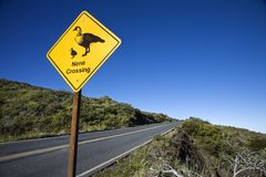 A duck crossing sign. Royalty Free Stock Images