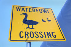 Duck Crossing Sign Royalty Free Stock Images