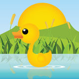 Duck. Cute little duck swimming on abstract background stock illustration