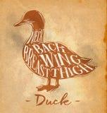 Duck cutting scheme craft Stock Images