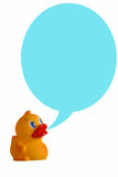 Duck dialogue. Rubber duck with dialogue balloon royalty free stock images