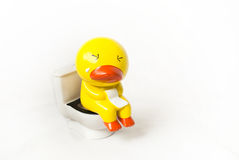Duck doll on toilet seat Royalty Free Stock Images
