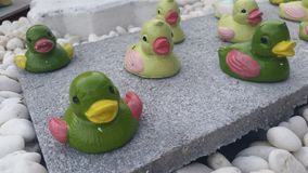 Duck dolly. Doll Green Duck royalty free stock photo