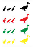 Duck and duckling silhouettes. Mother duck and her chicks set of colorful silhouettes, vector Stock Photography