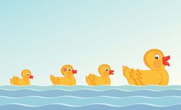 Duck and ducklings Royalty Free Stock Images