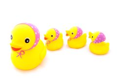 Duck with ducklings. The toys. Duck with ducklings stock photos