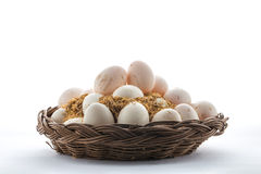 Duck egg.  Royalty Free Stock Photography