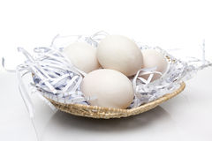 Duck Egg in nido Immagine Stock Libera da Diritti