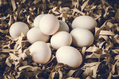 Duck egg on straw paper Stock Image