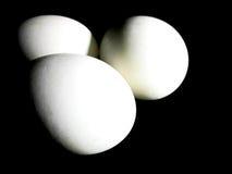 Duck Eggs Fotografia Stock Libera da Diritti