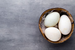 Duck eggs on a cage gray background. Stock Photography