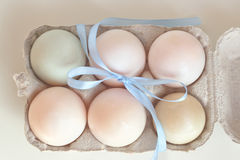 Duck eggs Royalty Free Stock Photography