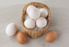Duck eggs and Chicken eggs in Basket Stock Image