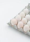 Duck eggs Royalty Free Stock Photo