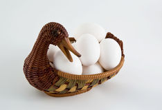Duck and eggs. On white background Stock Image
