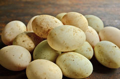 Duck eggs. White and green duck eggs on wood background Stock Images