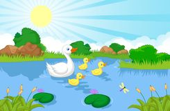 Duck family cartoon swimming Royalty Free Stock Photography