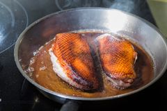Duck fillet on grille pan. Poultry meat prepared on a grill. Fresh, delicious, spicy dish on a kitchen with copy space Stock Image