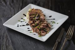 Duck fillet slices with soy sauce Stock Images