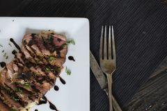 Duck fillet slices with soy sauce Stock Image