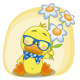 Duck with flowers Royalty Free Stock Photo