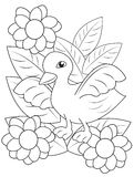 Duck with flowers and leaves coloring page Stock Image