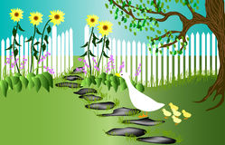 Duck Garden Stock Image