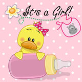 Duck girl Stock Images