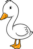 Duck goose. Vector Illustration of Duck goose Royalty Free Stock Images