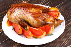 Duck with grapefruits Royalty Free Stock Photography