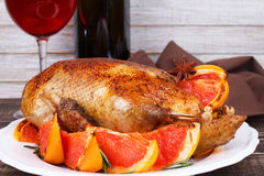 Duck with grapefruits Stock Images